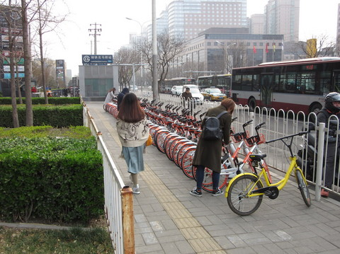 IMG_5448オレンジ自転車.JPG
